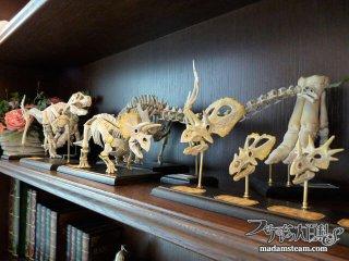 私の恐竜骨格標本コレクション・巨匠荒木一成氏のリアルプラモデル