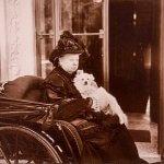 ヴィクトリア朝のペットブーム・犬は人間の最高のともだち