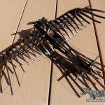 「エトリッヒ・タウベ」鳩の形のレトロ軍用機