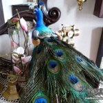 「鳥のオブジェ」私の家の鳥たち