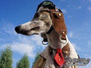 「スチームパンクドッグウェア」犬服の作り方