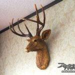 暖炉周りの改造(2)AliDxpressで購入した鹿の頭