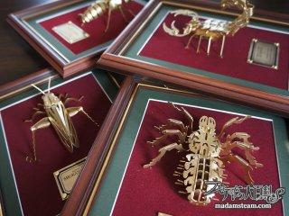 スチームパンクなゴールドメタル昆虫・メタルキットを額装しました