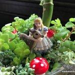 多肉植物セダムの国のアリスと子鹿【不思議の国のアリスシリーズ2】