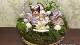 アリスと子豚のテラリウム【不思議の国のアリスシリーズ11】