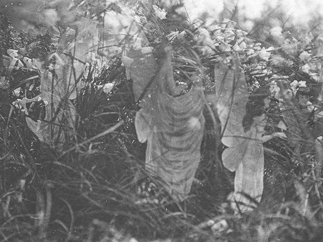 Cottingley Fairies