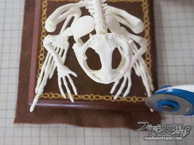 玩具の骨格標本