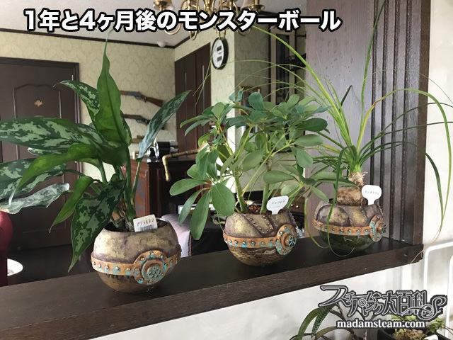 Steampunk poke ball planter