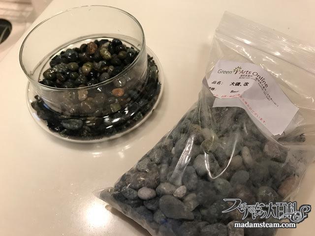 魚と蛙の召使のテラリウム