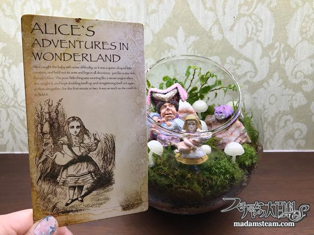 子豚とアリスのテラリウム