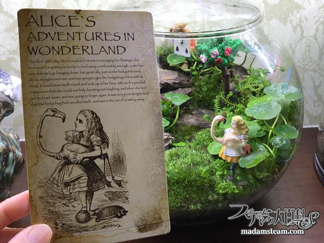 テラリウムの国のアリスと女王