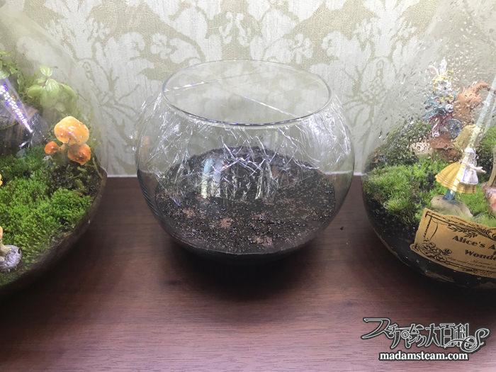 育てる水草