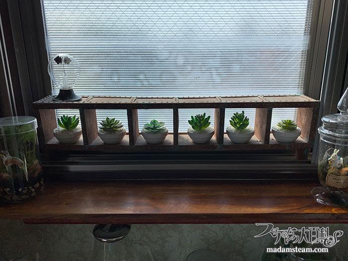 人工多肉植物のミニポット