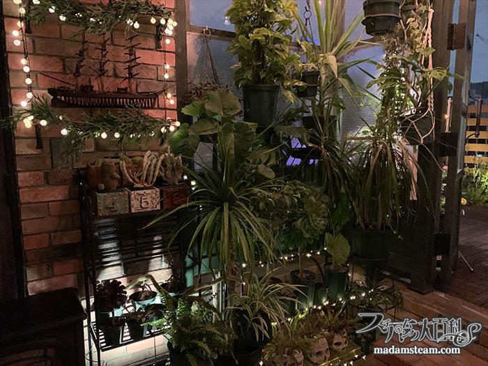 庭・温室のライト