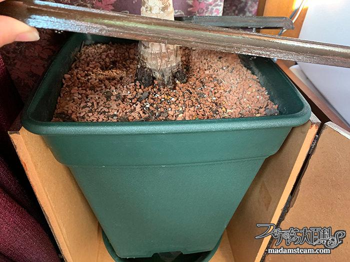 観葉植物鉢のプランツテーブル