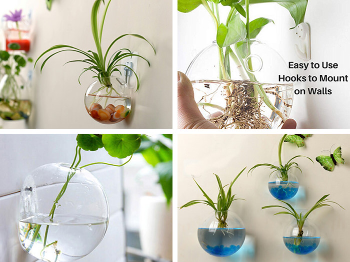ガラスの壁掛け花瓶