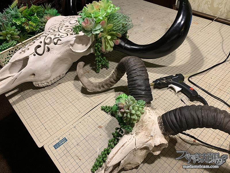 牛の頭蓋骨ランプとカシミアヤギの頭蓋骨オブジェ