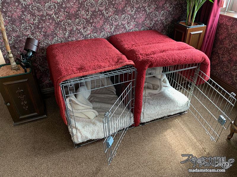 ヴィクトリアンな犬小屋